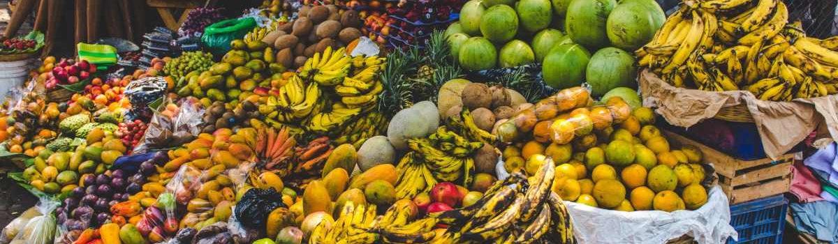 classificazione delle merci